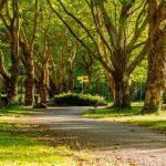 Worth Shaw Community Park